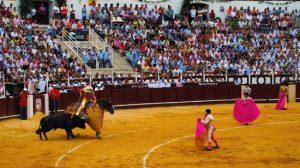 Toreros-plaza-Malagueta